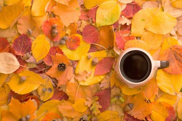 Xícara de chá nas folhas de outono