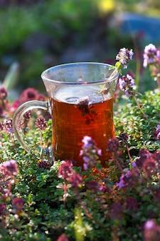 Xícara de chá quente em ervas de tomilho no verão. xícara de chá turco no verão