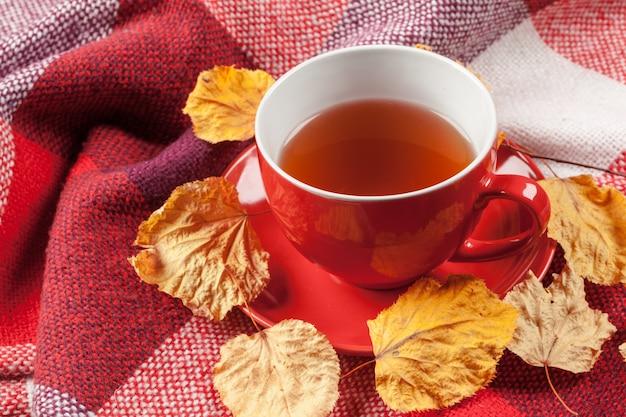 Xícara de chá quente, vestido com cachecol de malha de inverno quente