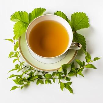 Xícara de chá verde decorado em círculo com folhas de morango e galhos com folhas verdes