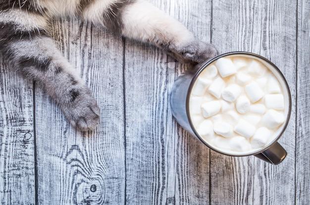 Xícara de chocolate com marshmallows e patas cinzentas de um gato em um fundo cinza de madeira