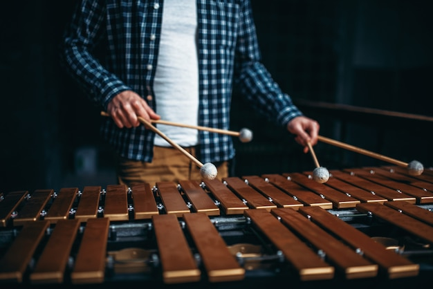 Xilofone em mãos com paus, sons de madeira