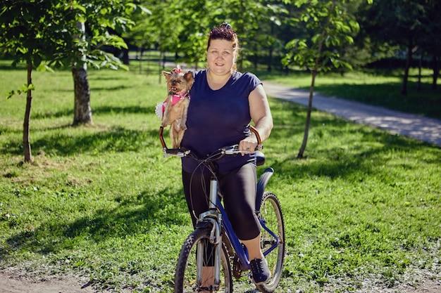 Yorkshire terrier nas mãos de uma mulher gorda em uma bicicleta