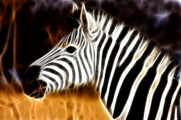 Zebra perfil abstrato