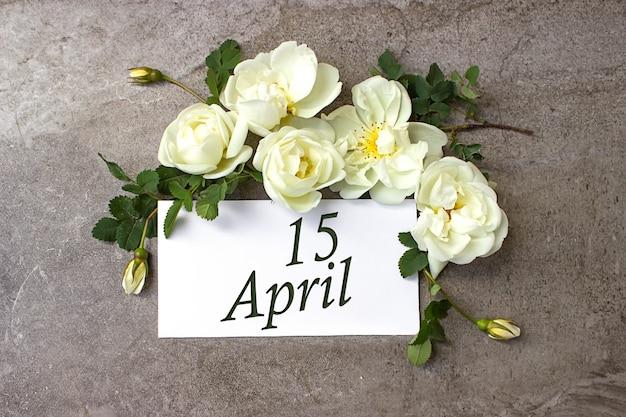 15. april. tag 15 des monats, kalenderdatum. weiße rosen grenzen auf pastellgrauem hintergrund mit kalenderdatum. frühlingsmonat, tag des jahreskonzepts.