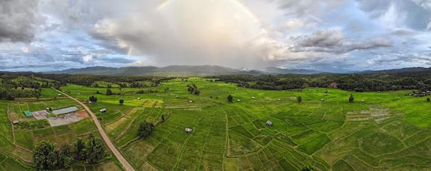 180 grad nahtloses luftpanorama des regenbogens bei regen über dem grünen reisterrassenfeld