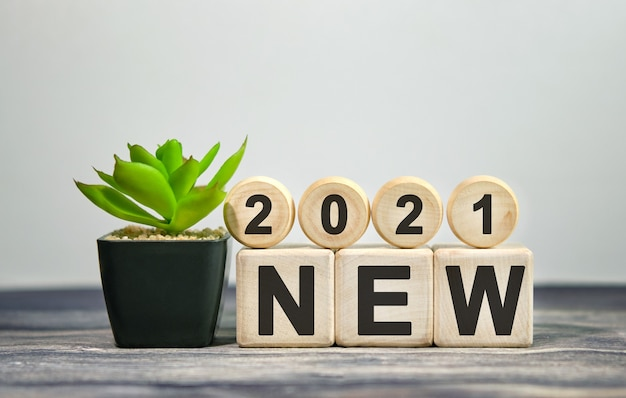2021 neu - finanzielles konzept. holzwürfel und blume in einem topf.