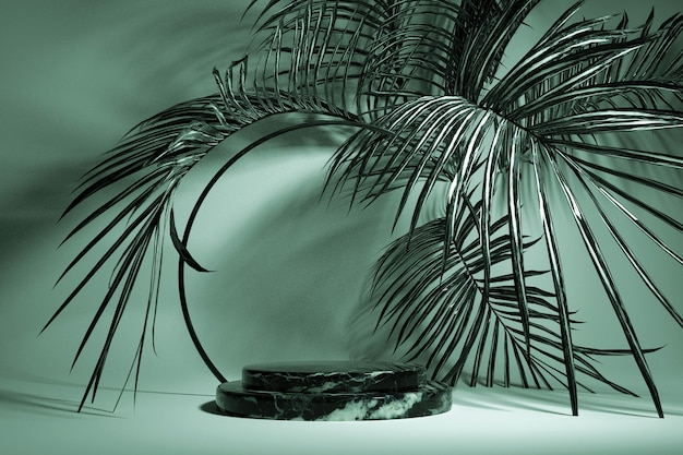 3d abstrakte tropische grüne palmblätter und runder rahmen marmor leere podiumsplattform für produktpräsentation sommer tropisches blatt exotischer dschungel sommer hintergrund summer