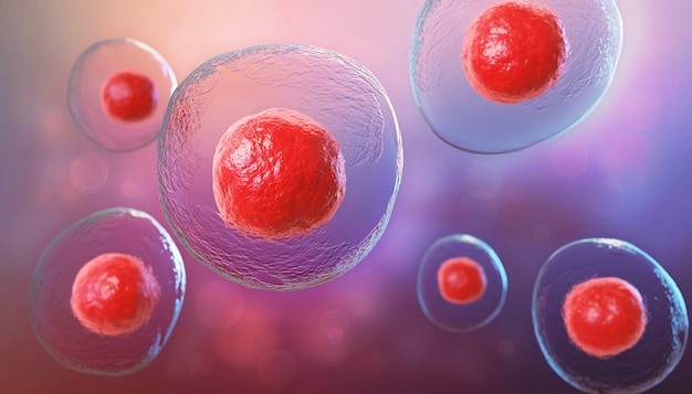 3d-darstellung von embryonalen stammzellen, hintergrund der zelltherapie.
