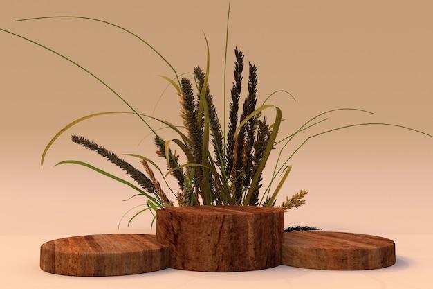 3d hintergrund beige sockel holzpodest natur trockenpflanze produktförderung herbstzusammensetzung
