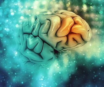 3D medizinischer Hintergrund mit Gehirn mit Frontallappen hervorgehoben
