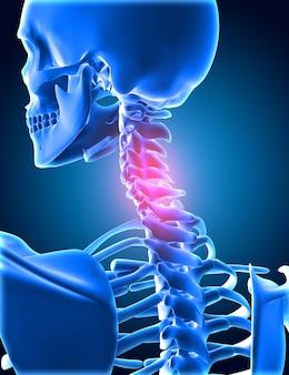 3d-rendering eines medizinischen hintergrunds des skeletts mit hervorgehobenen halsknochen