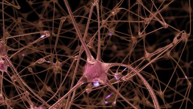 3d-rendering eines netzwerks von neuronenzellen und synapsen, durch das elektrische impulse und entladungen während der informationsübertragung im menschlichen gehirn geleitet werden
