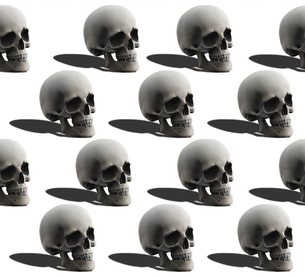 3d-rendering. nahtloses schädelknochenmuster des menschlichen kopfes auf weiß.