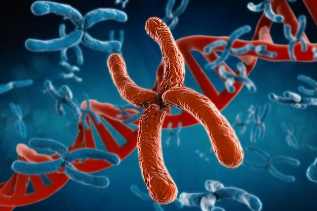 3d-rendering rotes chromosom mit dna-helix auf blauem hintergrund