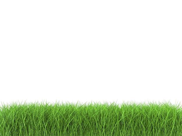 3d-rendering von grünem gras auf weißem hintergrund