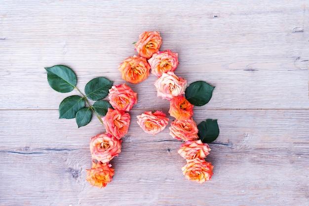 A, rosenblumenalphabet lokalisiert auf grauem hölzernem hintergrund, flache lage