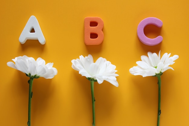 Abc - die ersten buchstaben des englischen alphabets und drei weiße chrysanthemen auf gelb