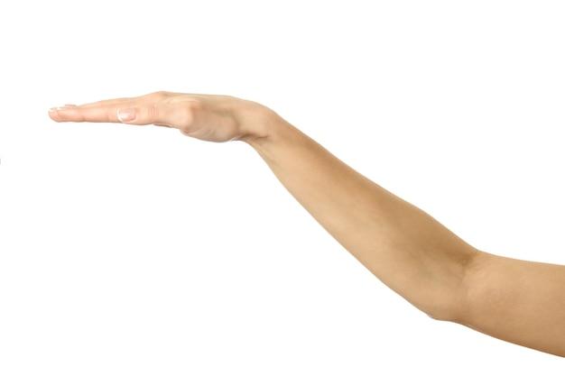 Abdeckung und schutz. frauenhand mit französischer maniküre gestikuliert lokalisiert auf weißer wand. teil der serie