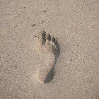 Abdruck im sand entlang küstenlinie in costa rica