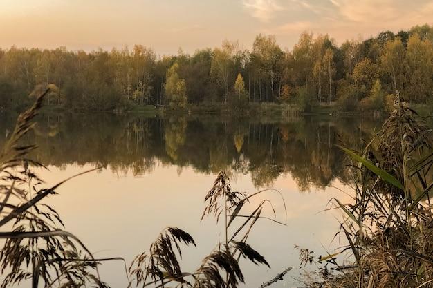 Abendlicht über dem see mit gelben blättern, die sich im wasser widerspiegeln, herbstliche landschaft