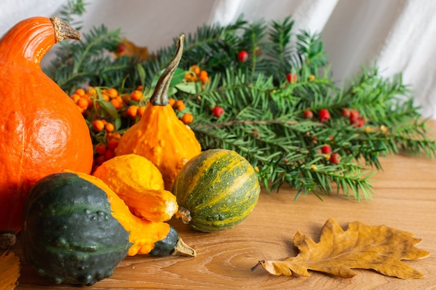 Abgefallene blätter von bäumen und kastanienfrüchten, orangefarbene vogelbeere und dekorative kürbisse auf holzhintergrund, herbsthintergrund