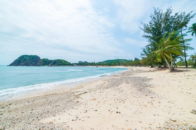 Abgeschiedener tropischer strand türkis transparente wasserpalmen, bai om unentwickelte bucht quy nhon vietnam zentrale küste reiseziel, weißer sandstrand klarer blauer himmel