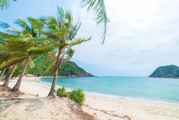 Abgeschiedener tropischer strand türkis transparente wasserpalmen