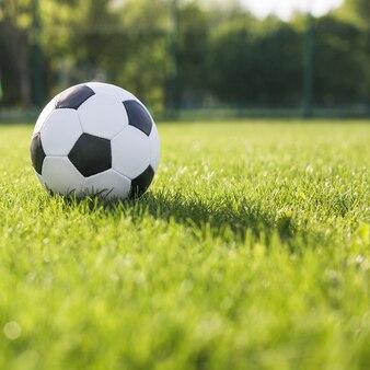 Abschluss oben des fußballs im gras