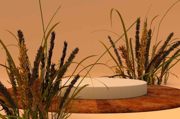 Abstrakte minimale herbstszene mit trockenen pflanzen und geometrischen formen zylinderpodiumpräsentation