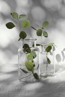 Abstrakte minimale konzeptblätter und -schatten