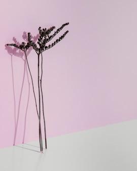 Abstrakte minimale pflanze, die sich an eine wand lehnt