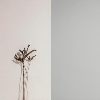 Abstrakte minimale pflanze, die sich auf eine wandvorderansicht stützt