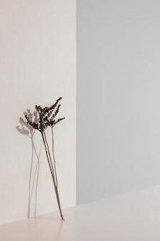 Abstrakte minimale pflanze, die sich auf einen wandkopierraum stützt