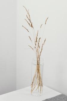 Abstrakte minimale pflanze in einem glas