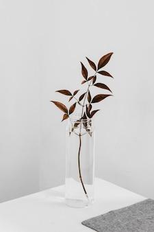 Abstrakte minimale pflanze in einem hohen glas