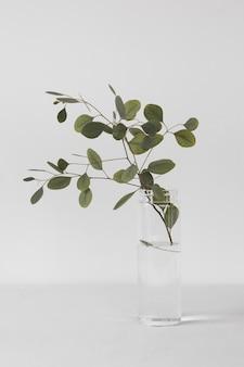 Abstrakte minimale pflanzenseitenansicht