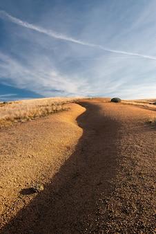 Abstrakte steppenlandschaft mit einem federgras