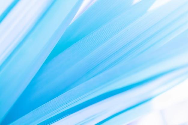 Abstrakter blauer hintergrund. blattbeschaffenheit