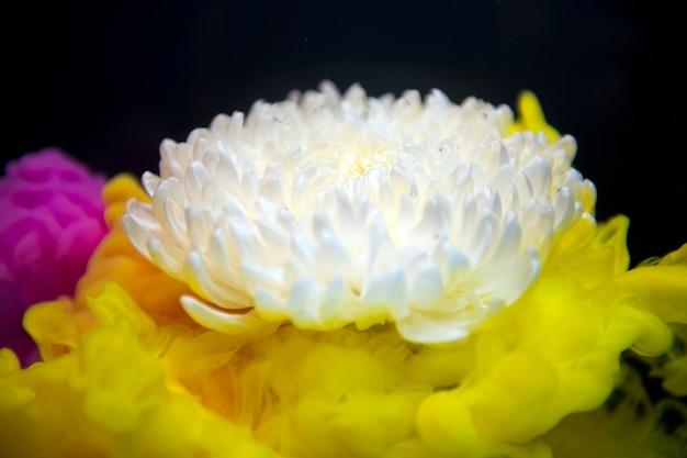 Abstrakter gelber farbtropfen zur wasserblumenform