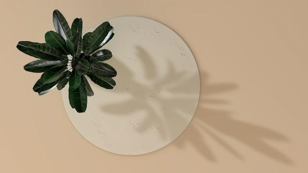 Abstrakter minimaler szenenkreisproduktstand mit blattschatten. 3d-illustration. draufsicht. marmorzylinder lokalisiert auf hintergrund.