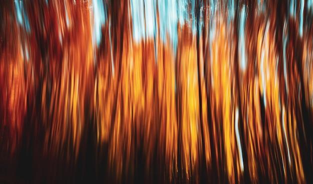 Abstrakter natürlicher hintergrund. bewegungsunschärfe von bäumen in einem herbstwald