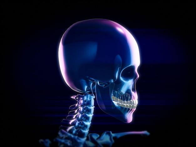 Abstrakter schädel, röntgenmodus des zahnarztes. 3d-rendering