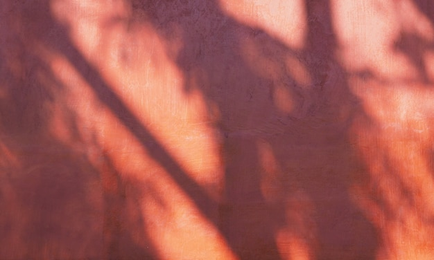 Abstrakter schatten eines baumblattes auf roter zementwand