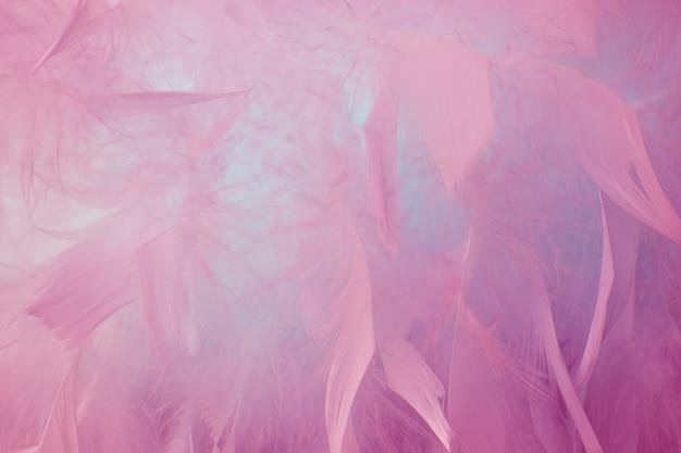 Abstrakter schöner rosa und blauer ton versieht hintergrund mit federn. flauschige federmode-design vintage-bohème-stil pastell textur. hochzeit, jubiläum, valentinstag-konzept. weicher fokus.