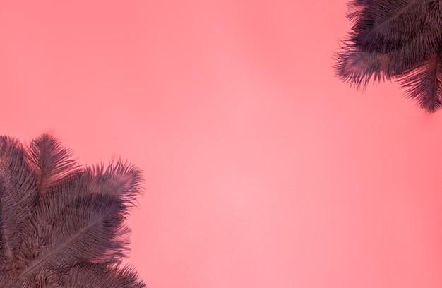 Abstrakter weicher pastellrosa-hintergrund mit braunen federn, hintergrundtextur-draufsicht mit kopienraum