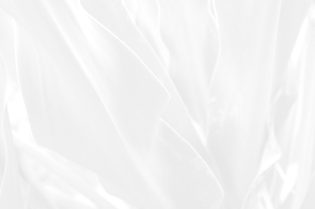 Abstrakter weißer hintergrundblattbeschaffenheitsentwurf.