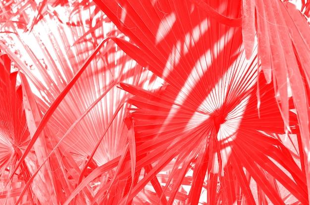 Abstraktes tropisches blattmuster. kunststilisierung