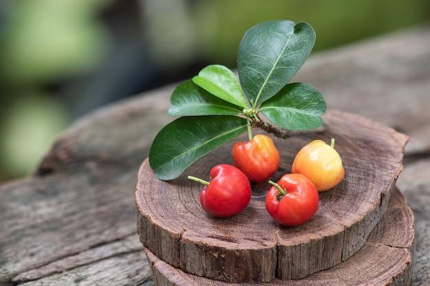 Acerola kirschfrüchte auf natur.