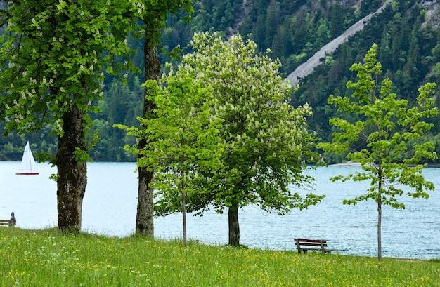 Achensee (achensee) sommerlandschaft mit kastanienbaum, blühender wiese und bank am ufer (österreich).